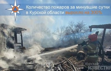 Квадракоптер выявил 34 поджигателя травы в Курской области