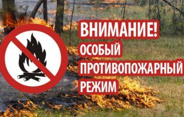 Особый противопожарный режим: требования нормативных правовых актов